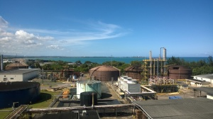The view from the balcony at Bacardi.