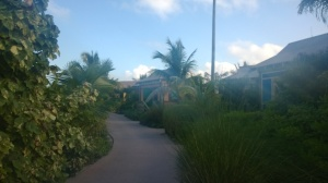 The path leading to the cabanas on the family beach of Castaway Cay